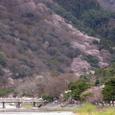 嵐山20070330