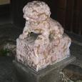 円山界隈・狛犬(こまいぬ)