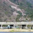 嵐山桜2008Sony086:渡月橋