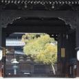 東寺2008X2-80:東寺の南大門
