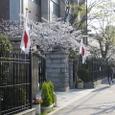 葛野桜2008IXY4103:入学式早朝の正門