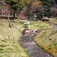 平安郷:庭園の小川