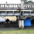 賀茂大橋下の花見基地とその他基地?
