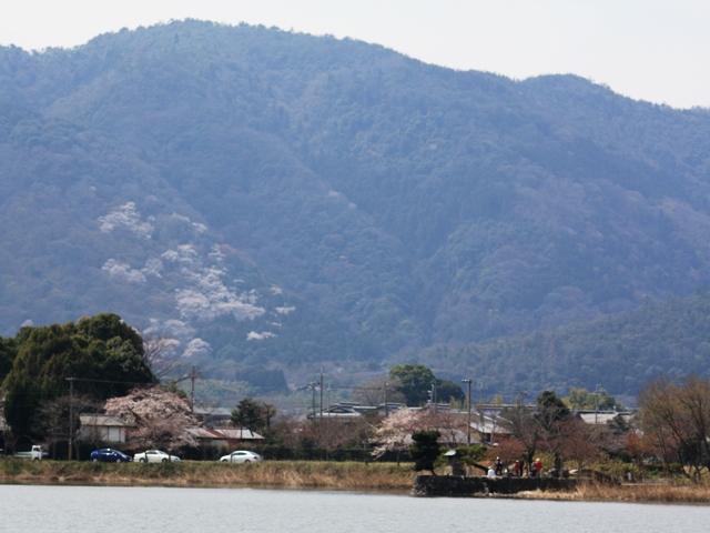 平安郷:嵐山遠望