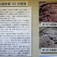 桜埋文02:纒向遺跡第162次調査