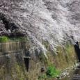 2011天神川:5761