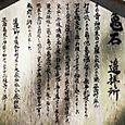 志賀海神社12:亀石案内板