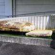 走田古墳群出土石棺の蓋石と底石