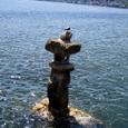 和布刈神社海中灯籠