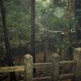 三柱鳥居:元糺池