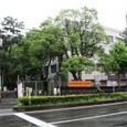 銀閣03京都大学工学部そばの北門