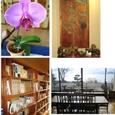 紅鮎の図書室