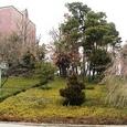 キャンパスの中の筒城宮跡伝承地