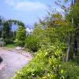 葛野・空中庭園:輝くアーチの小径