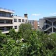 夏空と葛野日本庭園