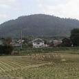 箸墓から見た三輪山
