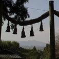 檜原神社から二上山遠望