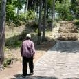6.甲賀寺・金堂跡へ歩むJo翁