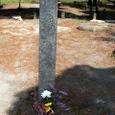 8.甲賀寺講堂跡の石碑と花