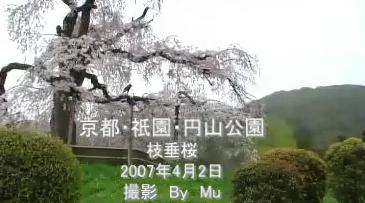 20070402maruyamatitle